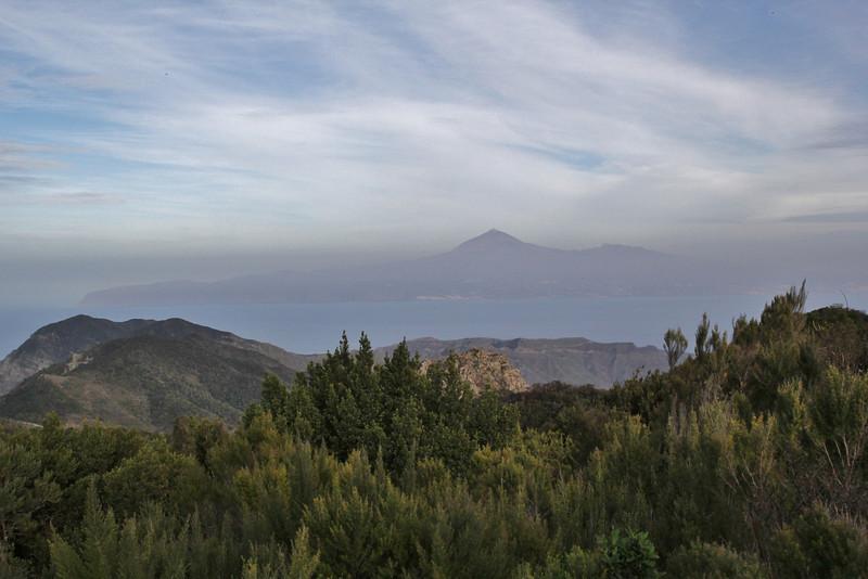 View at La Teide, Tenerife, from Bosque de Tejos