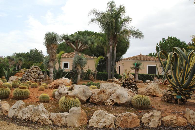 Garden Botanicactus, E of Ses Salines,  Photos of this Botanic garden see gallery:  ROCK GARDEN / OTHER GARDENS on this site.
