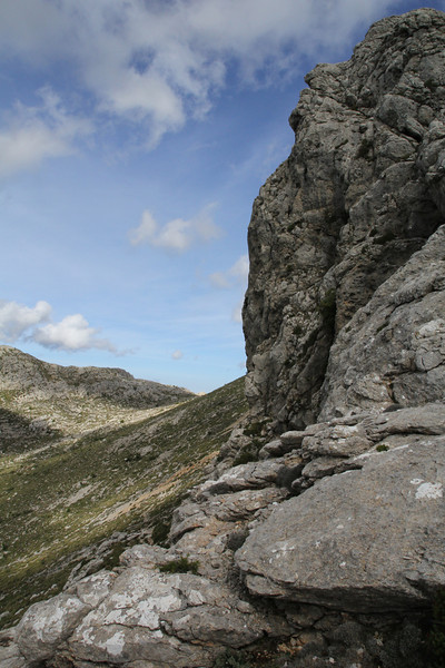 Habitat of Acer granatense , endemic to Mallorca and a small area on the mainland of Spain. GR 221 - Masanella 1365m
