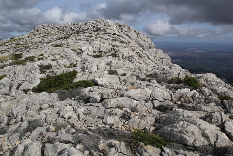 Summit of Masanella 1365m