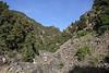 Higher part of Barranco de las Angustias, route PR LP 13.1 in the South of Parque Nacional de la Caldera de Taburiente