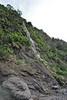 Waterfall, Barranco de las Angustias, route PR LP 13.1 in the South of Parque Nacional de la Caldera de Taburiente