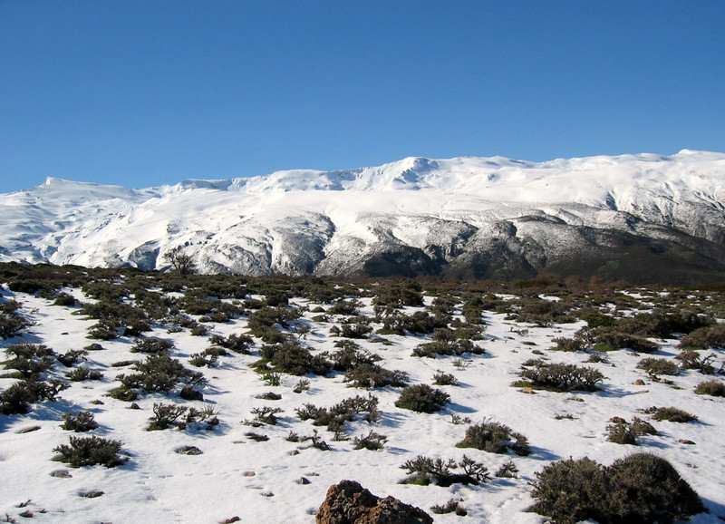 Sierra Nevada, (near Granada)