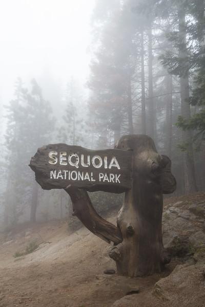 sign Sequoia N.P. California