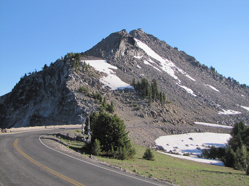 Habitat of Saxifraga tolmiei, Mount Scott 2721m, highest point in Crater Lake Park (North side)