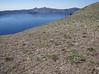 pumice habitat, Cloud Cap 2427m