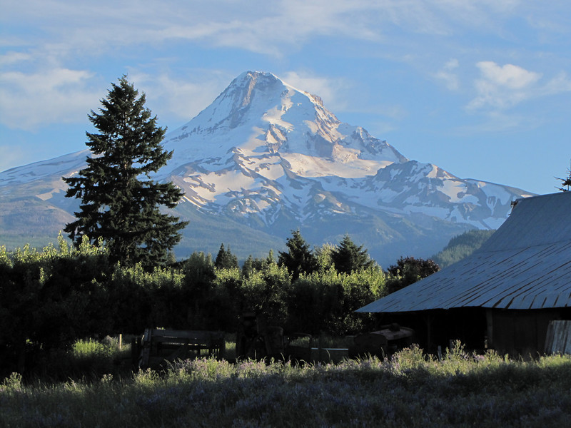 Mount Hood 3426m , view from Parkdale