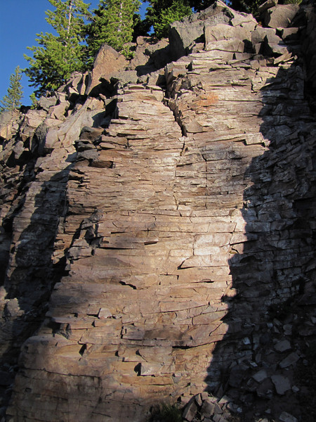 Rock habitat Along Caldera Road, Crater Lake National Park, Oregon