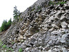 Basalt (Between Douglas Fir Campground and Ptarmigan Trail Trailhead, Mount Baker, Washington)