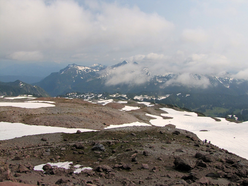 Pumice and scree habitat, Mount Rainier NP, Skyline Trail