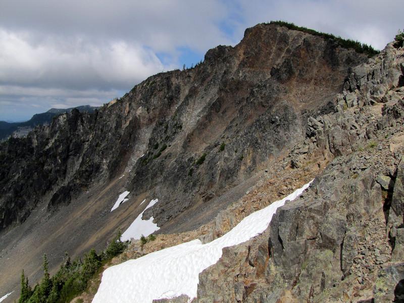habitat (Sunrise Ridge, Sunrise, Mount Rainier National Park, Washington)