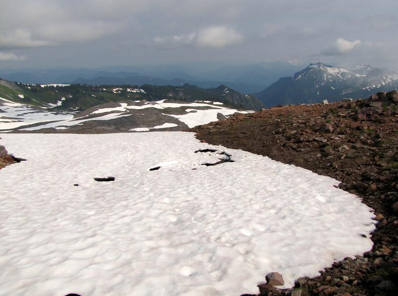 scree habitat near Mount Rainier 4342m, Mount Rainier NP, Skyline Trail