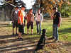 hunting dog (Starkville MS Autumn 2008)