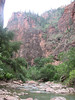 riverbank (Zion National Park Utah)