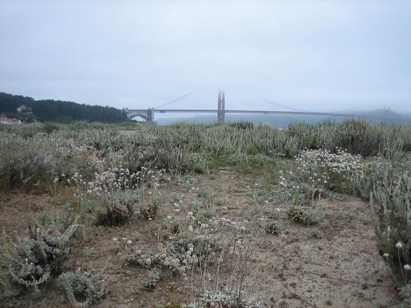 Coastal Nature Park, in the background the Golden Gate Bridge of San Francisco (California)