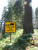 warning...(Yosemite N.P. Siera Nevada)