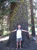 (Yosemite)