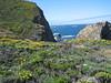 Westcoast Pacific Ocean