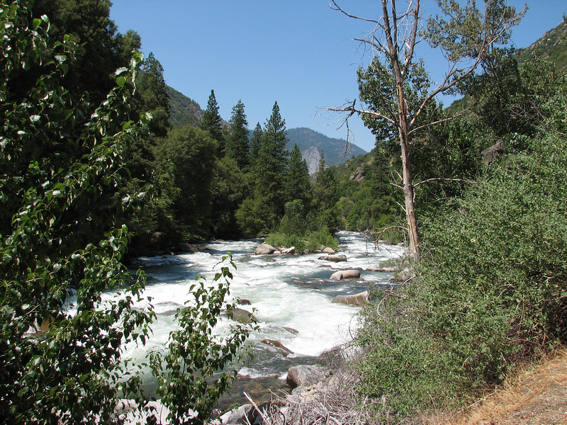 (Kings Canyon National Park)