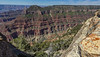 Grand Canyon N.P. Arizona