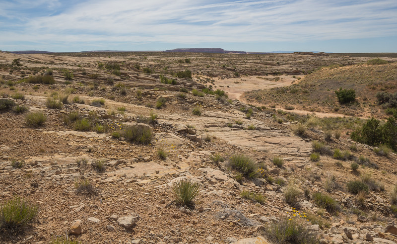 Petrofied dunes, Manti-La Sal National Forest