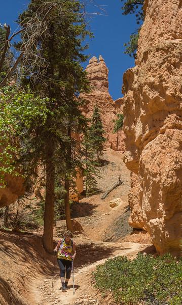 Peek-a- loop trail, Utah