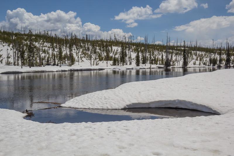 Scaup Lake