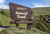 Ashley National Forest, Utah