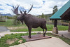 Moose sculpture