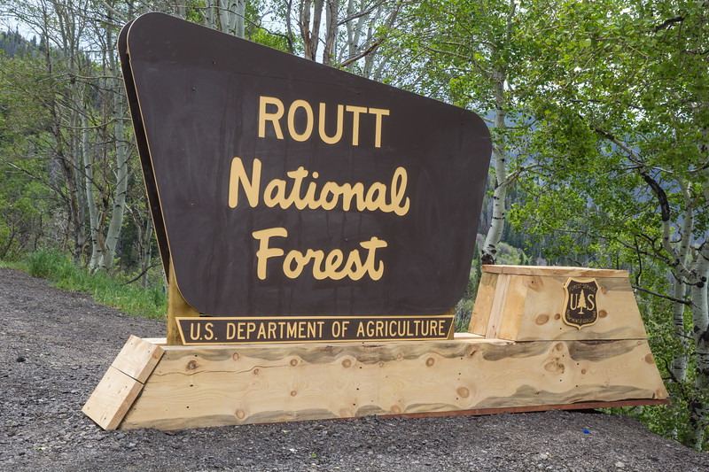 Routt National Forest