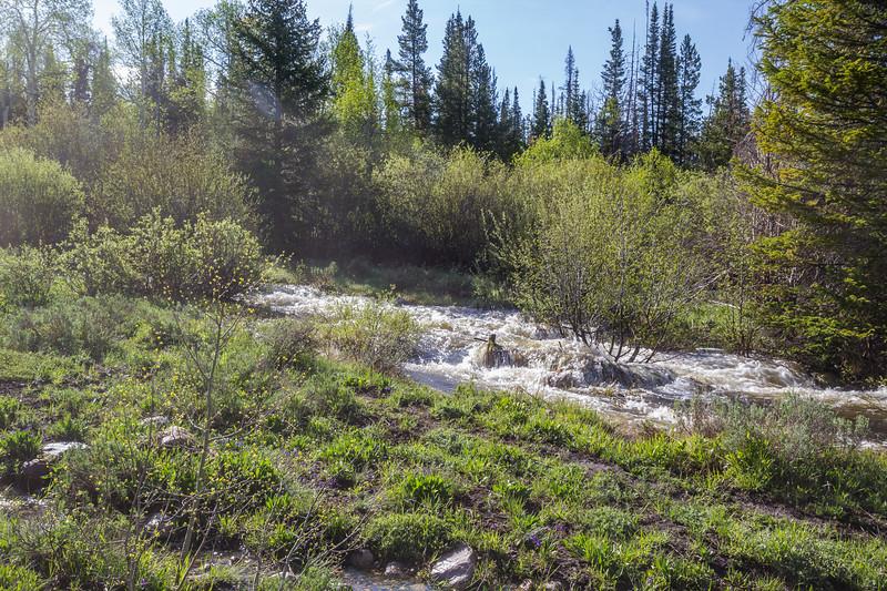 N.Barrett Creek