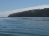 Fog from the Pacific Ocean, whale watching excursion from Anacortes, San Juan Islands, Washington and Britisch Columbia