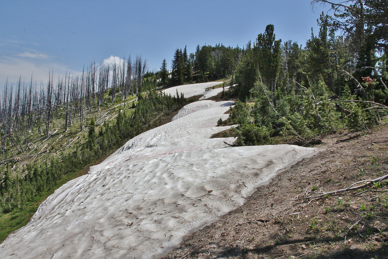 Snowfields at Mount Washburn 3152m.
