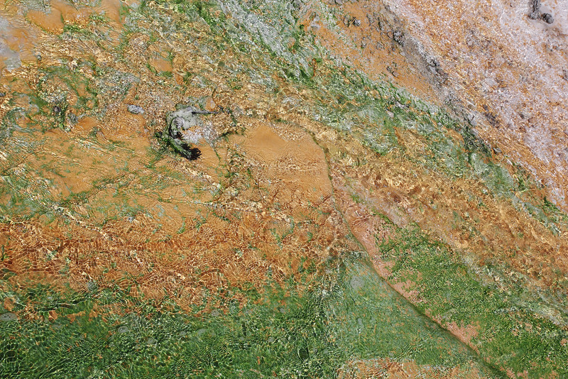Colours, result of bacteria whitch grow in hot water, Geyser basin