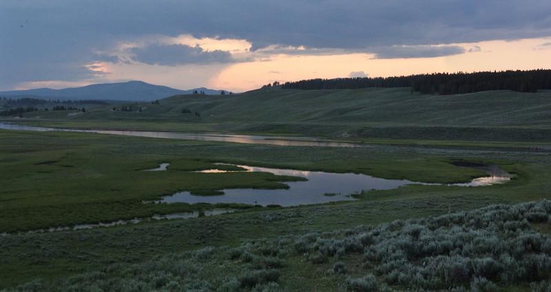 Evening in Yellowstone.