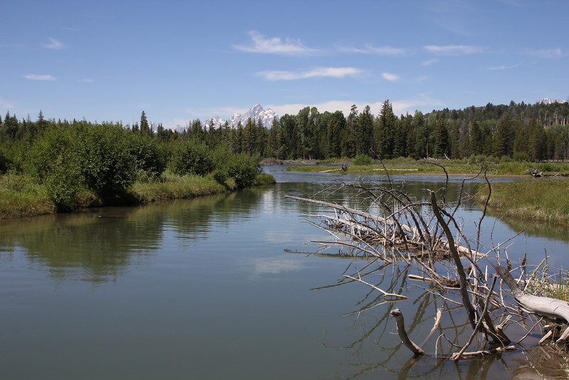 Buffalo Fork, Bridger-Teton National Forest.