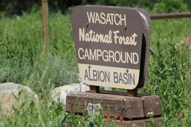 Albion Basin, campground