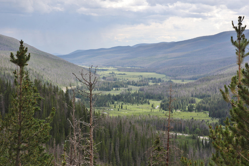 View from Bear Lake Road at a valley in Rocky mountain National Park