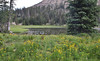 Big Elk Lake, Balt Mountain Trail, Wasatch-Cache Natural Forest, UT.