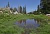 Wet habitat