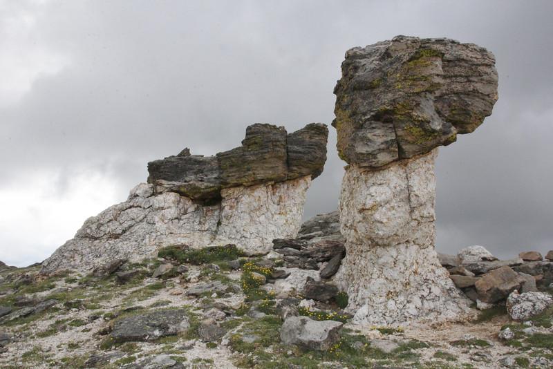 Granit base and Schist cap, Trail Ridge Road