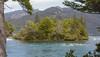 Area Chucao, Lago Menéndez, P.N. Los Alerces