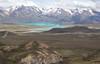 Habitat Viola auricolor, in the background Lago Belgrano