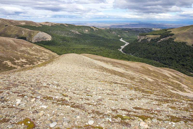 Stony top ridges habitat