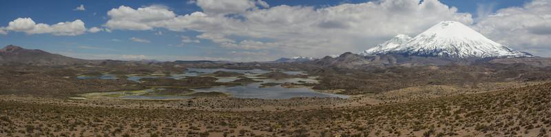Lagunas Cotacotani with Vulcano Pomerape 6282m and Parinacota 6630m