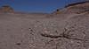 Reserva Nacional Los Flamincos, Atacama desert, Antofagasta