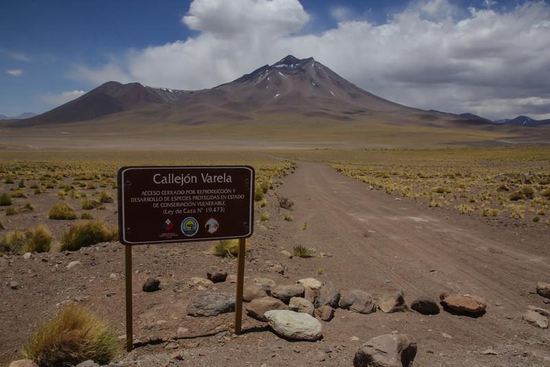 Near Camp el Laco 4300m, Argentinian border, Antofagasta