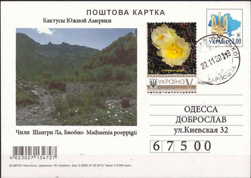 Ukraine card and stamp with habitat of Maihuenia poeppigii