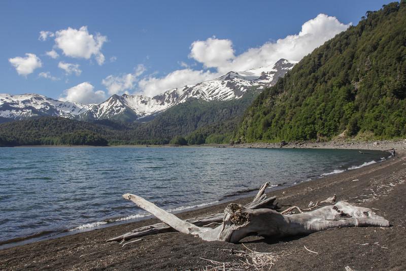 Border of Laguna Conguillio,