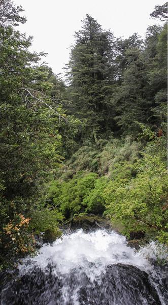 Parque Nacional Puyehue, Los Lagos